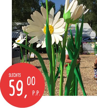 59pp_bloemen